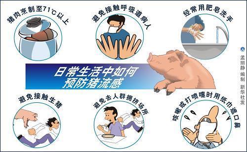 О том, как китайцы борются со свиным гриппом