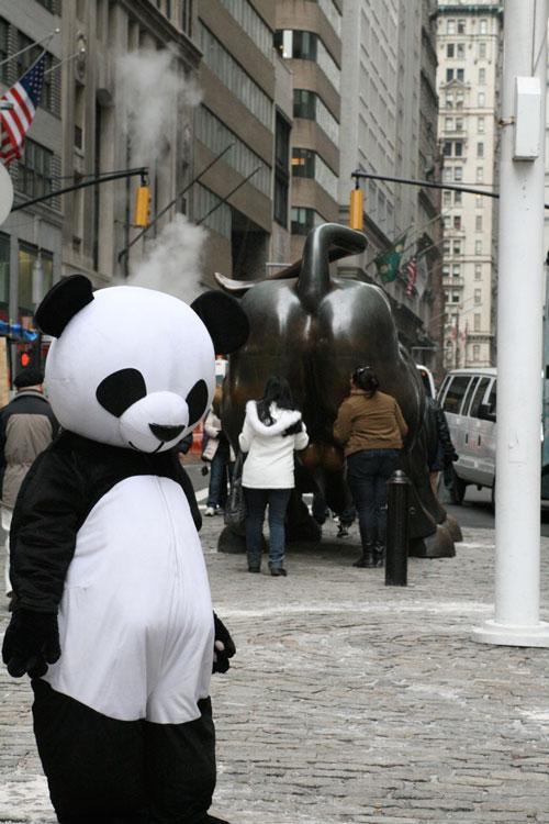 Грустная панда в Нью-Йорке