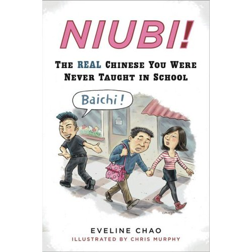 "Книга ""Niubi!: The Real Chinese You Were Never Taught in School"" и интервью с автором"