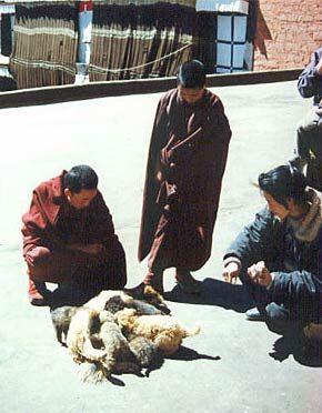 tibet28
