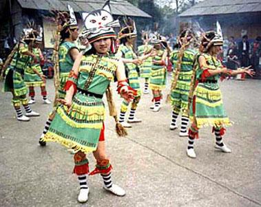Китайский кошачий танец / Магазета: всё о Китае