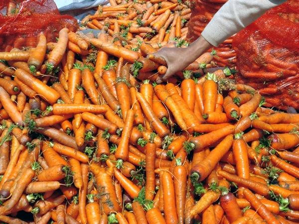 """Малоинформативные разноцветные фотографии от """"Китайского"""" вегетарианца / Магазета"""