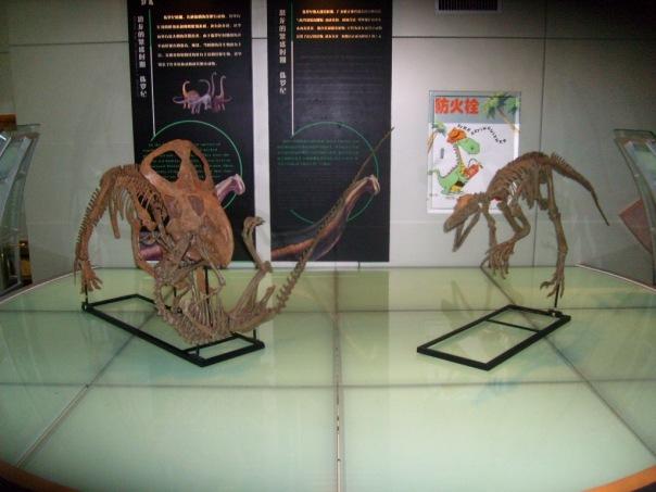 Амурозавры из Хэйлунцзяна / Магазета