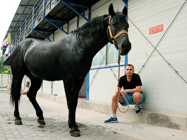 Джигит Дима и конь Каприз | Цирк в Китае (Магазета)