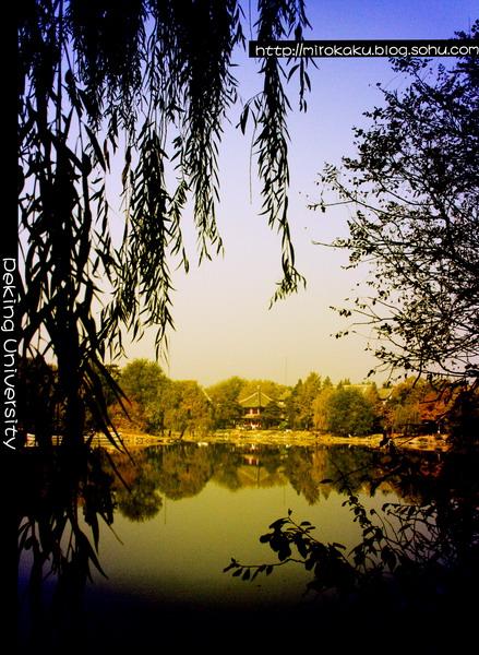 Пекинский университет, или за забором / Магазета