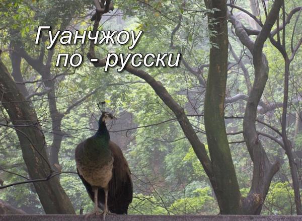 Русские в Китае - Гуанжоу по-русски / Магазета