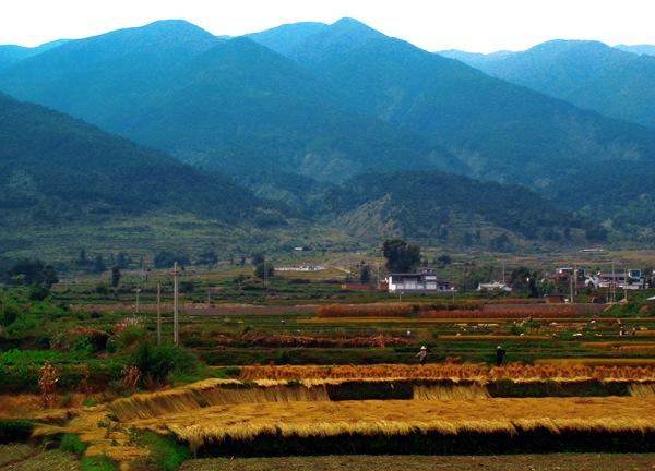 Восход Южного царства. Наньчжао / Четыре тысячи лет в Дали