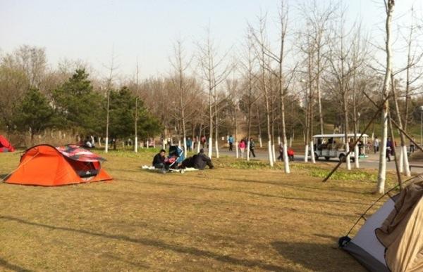Палатки в парке