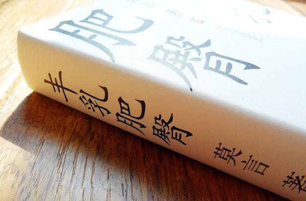 Снежный принц - Глава из романа Мо Яня «Большая грудь, широкий зад»