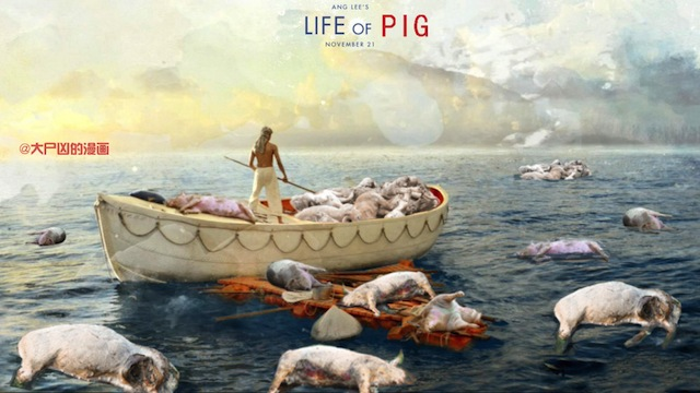 Число найденных трупов свиней в шанхайской реке достигло 5916 свиней