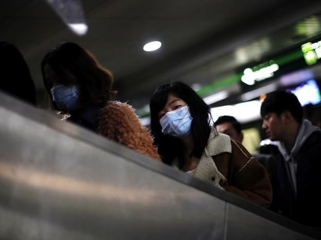 Птичий грипп в Шанхае