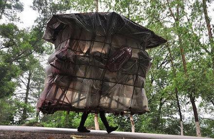 Китаец построил себе портативное бамбуковое жилье и путешествует с ним по стране