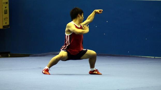 Наньцюань (южный кулак) 南拳