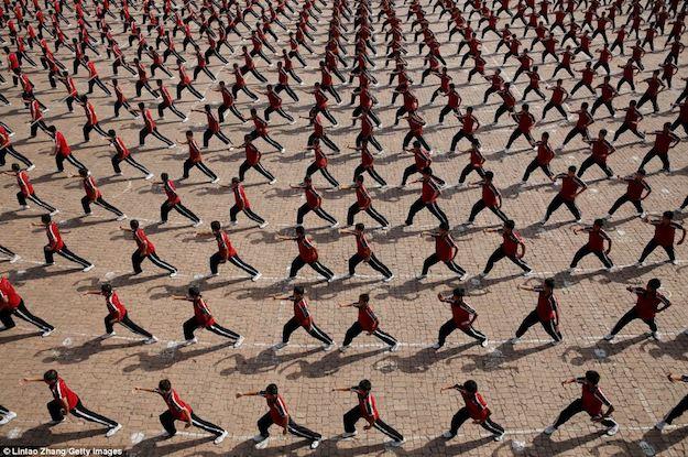 10 стилей китайского кунг-фу