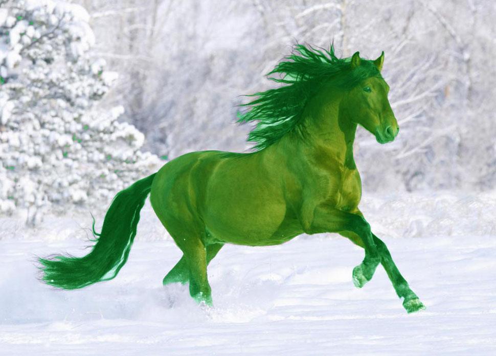 2014 Год зеленой лошади