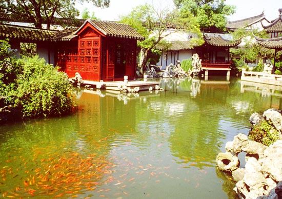 Кои в Сучжоу