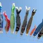 Кои-нобори реют на ветру