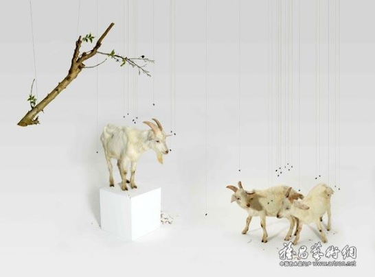 Три горных козы. Хун Лэй, 2007.