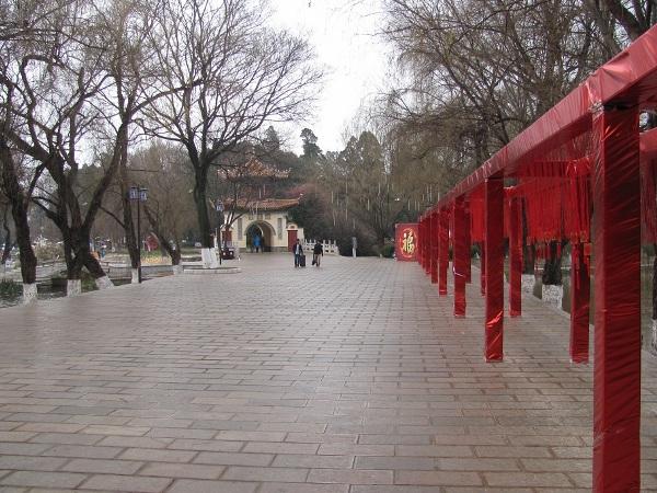 kunming (25)