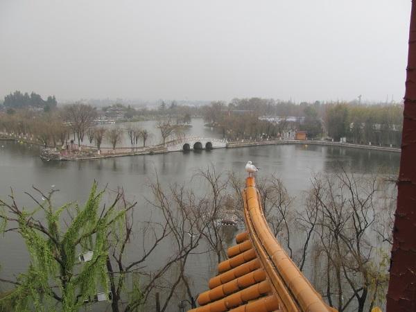 kunming (29)