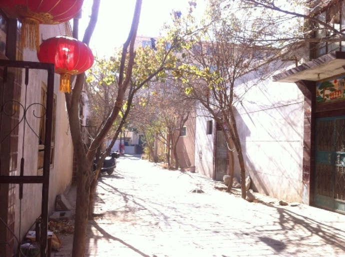 painter-zhangping (2)