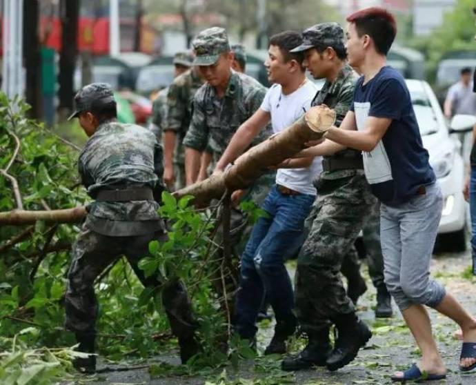 typhoon-19