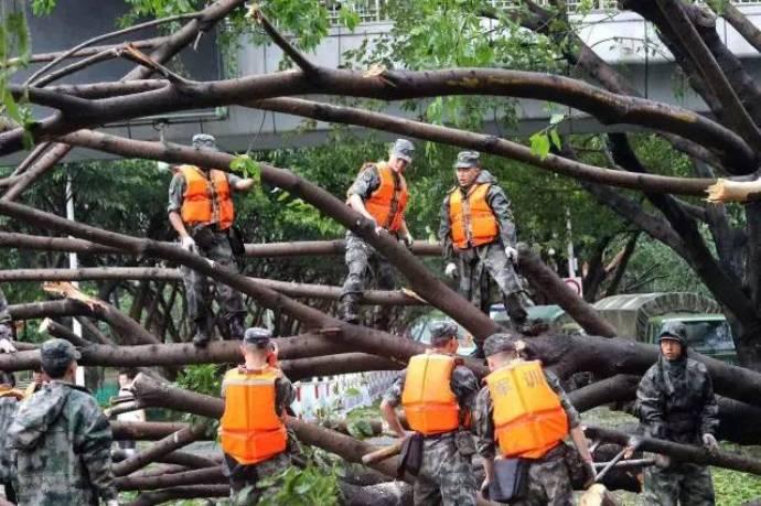 typhoon-21