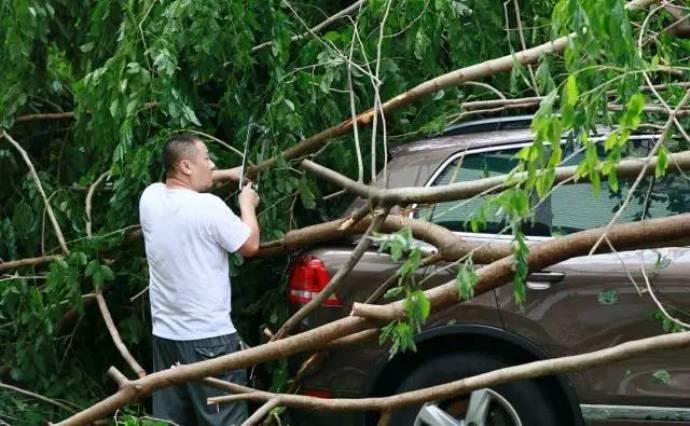 typhoon-26