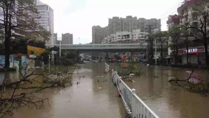 typhoon-36