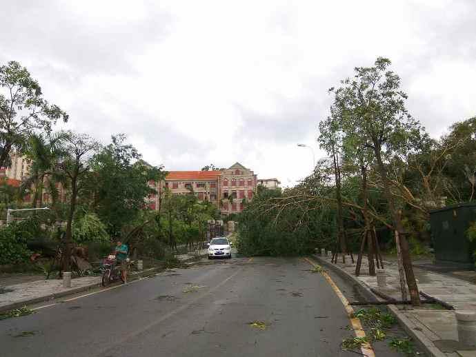 typhoon-4
