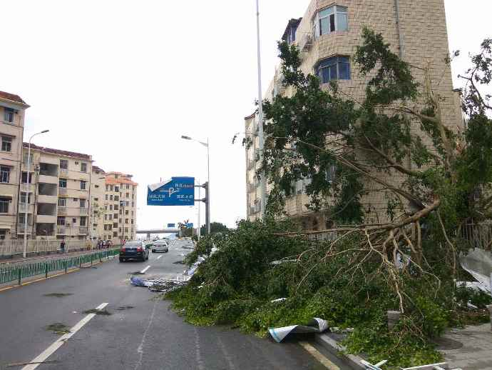 typhoon-40