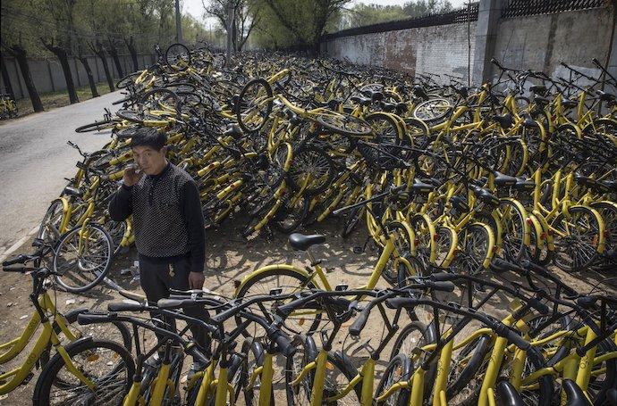 Пекинский стартап шеринга велосипедов Ofo в числе единорогов. Источник: Kevin Frayer/Getty Images