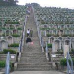 Китайцам платят деньги за «зеленые» похороны