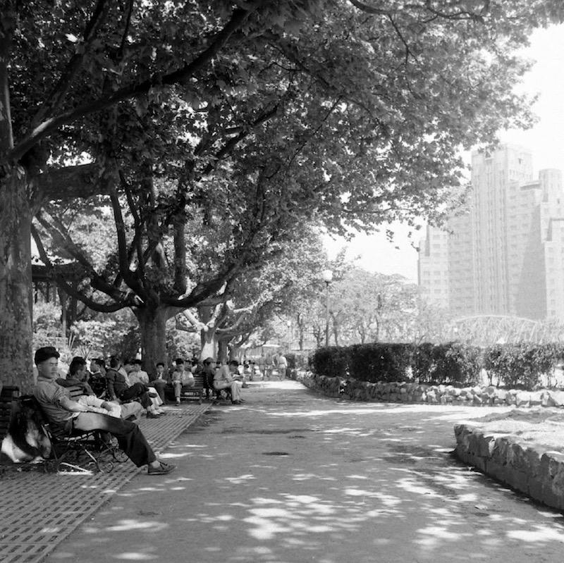 Посетители парка сидят в тени платанов в 1949 году. Источник: Jack Birns