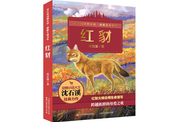 Шакал и волк. Источник: www.spider.com.cn