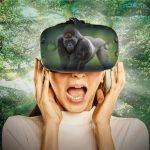 виртуальный зоопарк