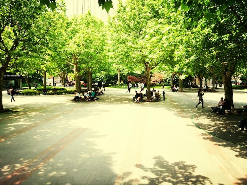 Парк летом. Источник: flickr Elesvil