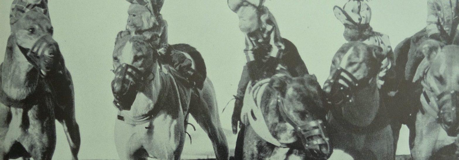 Обезьяны-жокеи на гончих в 1938 году (с) John Pal-Shanghai Saga