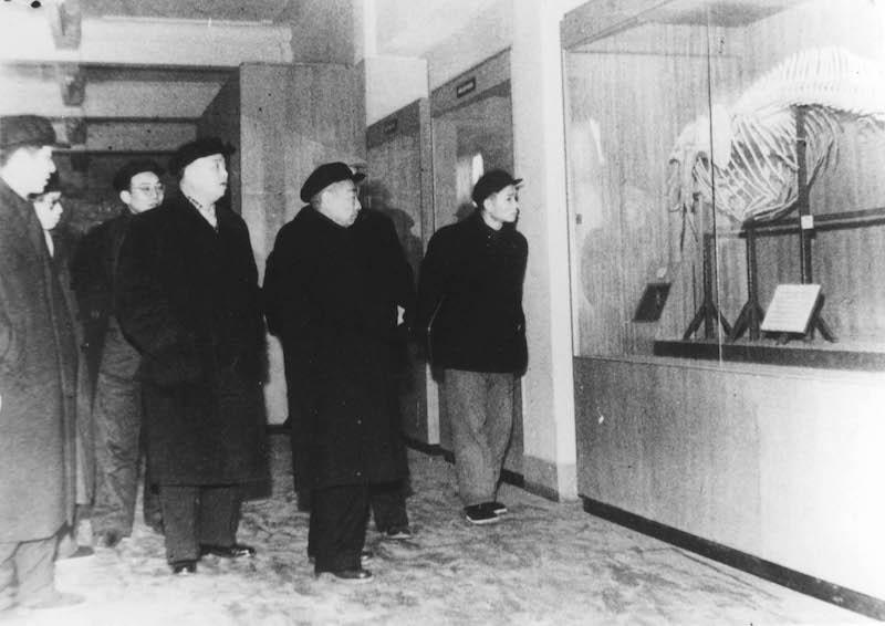 Вице-мэр коммунистического Шанхая Цзинь Чжунхуа (金仲华) инспектирует городской музей в 1956 году. Источник: minguotupian