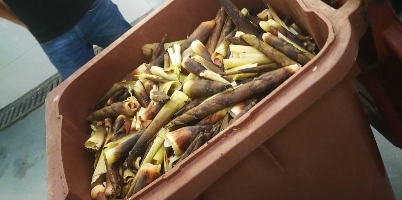 Репортаж. Как в Шанхае перерабатывают пищевые отходы