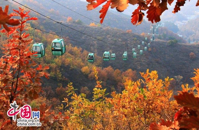 До самой высокой точки Цзиньшаньлин ходит канатная дорога. Источник: China.org.cn