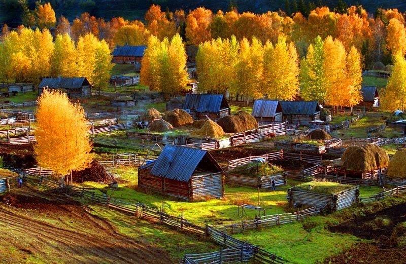 Деревня Канас осенью. Источник: 人民报