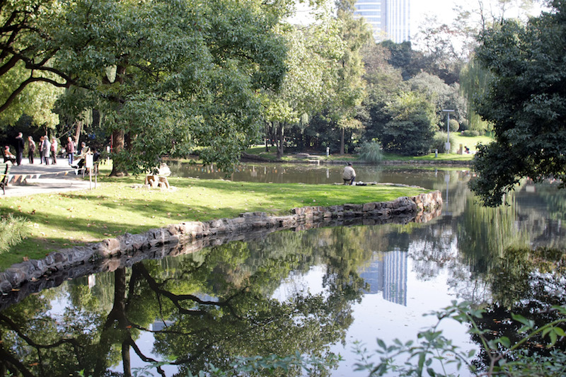 Пруд в парке. Источник: flickr 凌智 (Suzuki)
