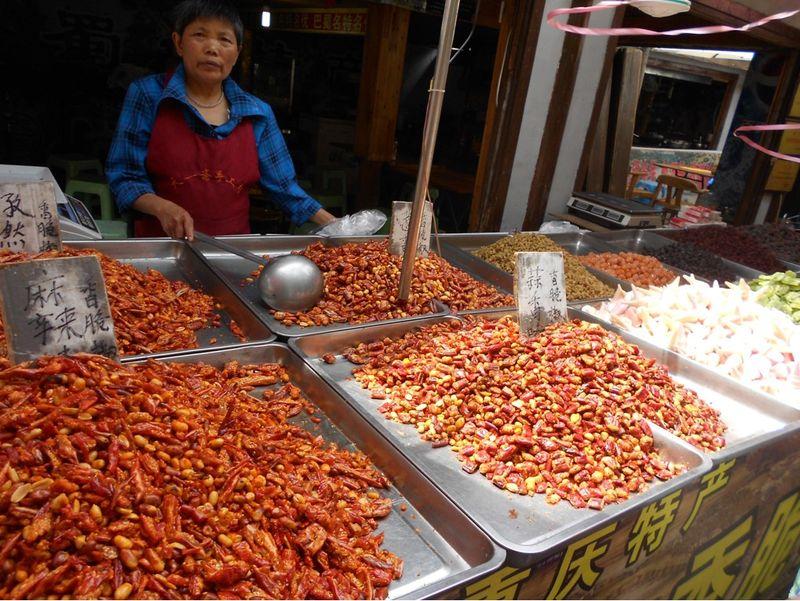 visit chongqing