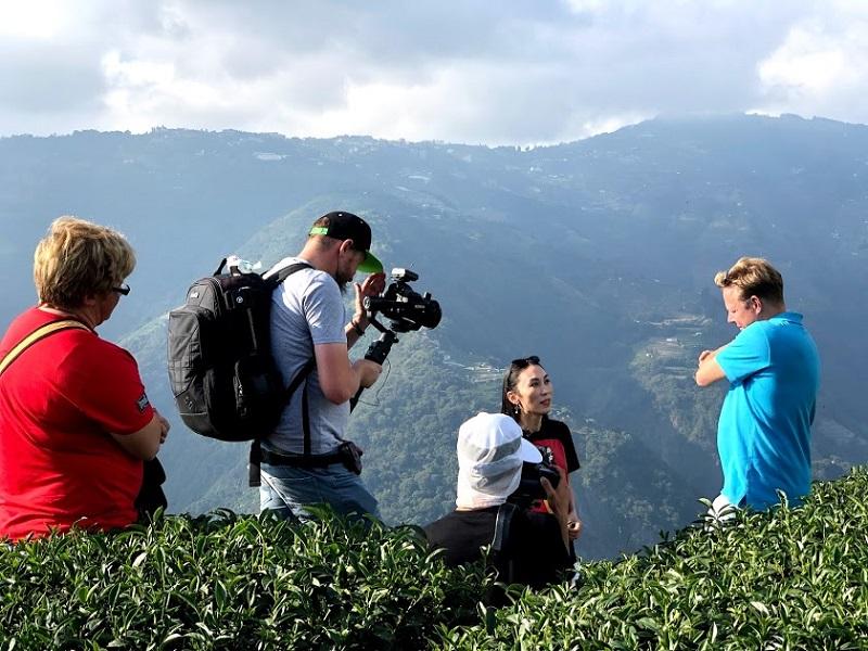 Чайные плантации на Тайване.